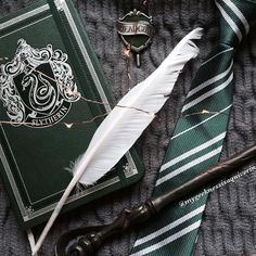 Slytherin student essentials