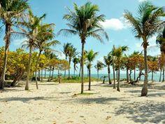 Crandon park beach, Florida