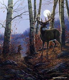 James Meger The Buck Stops Here | WildlifePrints.com