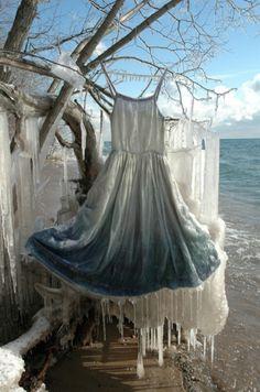installation by Nicole Dextras