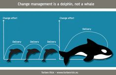 A CHANGE MANAGEMENT