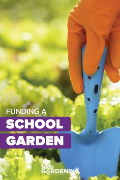 There are a number of ways to acquire the materials and funds you will need to sustain your school garden program. Most Beautiful Pictures, Cool Pictures, Apply For Grants, Behavior Reflection, After School, Programming, Fundraising, Curriculum, Sustainability