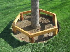 Raised Bed Around The Tree With Bench Seating Landscaping Pinterest Best Raised Bed Bench