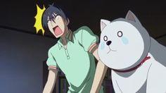 Aho Girl - Akuru Akutsu y Perro Otaku, Aho Girl, Stupid Girl, Girl Memes, Childhood Friends, Manga, Series Movies, Webtoon, Kawaii