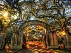 Vstupní brána do parku