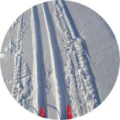 """Start turen i fra Solvika og følg meket løype til Venstøptjern (7,8km). Det er noe stigning frem til Havretjern (4km), deretter er det lett kupert med noen mindre """"kneiker"""" og noen flotte utforkjøringer. Etter Venstøptjern starter nedkjøringen til Eriksrød. Her er det ikke kjørt løype (ca.1,7km). Her kan du velge å ta veien ned det første stykket. Men vær obs på å ta av når du kommer til en liten motbakke. Klikk på bildet for full beskrivelse! Tapestry, Tips, Home Decor, Hanging Tapestry, Tapestries, Decoration Home, Room Decor, Home Interior Design, Needlepoint"""