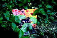 http://www.teresamorone.com/2016/07/18/dietorelle-i-miei-momenti-piu-dolci/ http://bit.ly/29NCSyC #Dietorelle #stevia #DMoments #food #lifestyle #theFashiondiet #candy #candies #diet #beautifulpic #lifestyleblog #foodblog #lifestyleblogger #foodblogger #nature