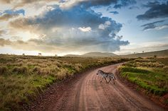 vacation travel photos - Mwanza, Tanzania