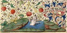 Bathing cat - medieval French proverb 'aussi aise que ung chat qui ce baingne'. Book of hours, Rouen 15th century (Paris, BnF, Nouvelle acquisition latine 3134, fol. 18v) Discarding images