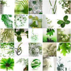 en verde y blanco