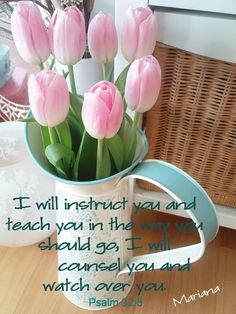 I will instruct you...