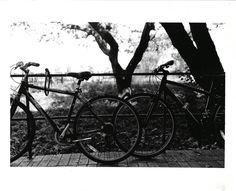 Utility Pole, Artwork, Photography, Instagram, Work Of Art, Photograph, Auguste Rodin Artwork, Fotografie, Artworks