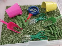 All The Buzz At Grandma's A Pea sensory box - It's filled with dried split peas, scoops, scissor scoops, tweezers, magnifying glass, snap peas and snow peas. Box goes great with books The Princess and the Pea and Little Pea. Fairy Tale Activities, Eyfs Activities, Nursery Activities, Health Activities, Sensory Boxes, Sensory Table, Sensory Play, Princess And The Pea, Prince And Princess