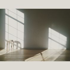 our morning studio light  *Claudette Carracedo Photography