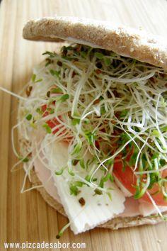Sandwich saludable 2 rebanadas de pan integral ½ cucharita mayonesa 2 rebanadas pechuga pavo 3-4 rebanadas queso panela ½ tomate, en rodajas Germinado de alfalfa