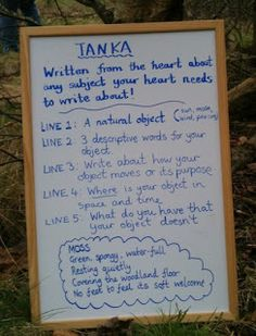 Try writing a Tanka poem in the woods
