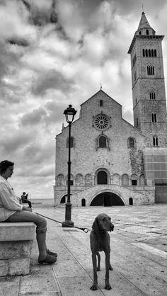 Trani Cathedral - Puglia, Italia #Romanesque #Architecture