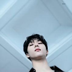 Velvet Wallpaper, Andy Park, Nct Chenle, Park Jisung Nct, Park Ji Sung, Boy Idols, Light Of My Life, Emo Boys, Kpop Aesthetic