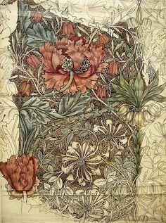 William Morris by myra