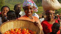 El Papa anima a colaborar en campaña mundial contra el hambre
