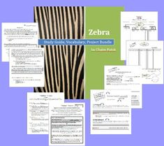 Zebra by chaim potok lesson plan zebra and chaim potok zebra by chaim potok your students will investigate characterization theme symbolism fandeluxe Gallery