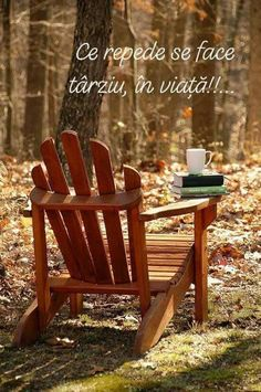 This is a comfortable chair. Perfect for reading. An Adirondack chair. Autumn Day, Autumn Leaves, Fallen Leaves, Simple Pleasures, Happy Fall, Adirondack Chairs, Belle Photo, Fall Halloween, Fall Decor