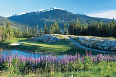 British Columbia Invites You to Test Drive Its Par 3s. - The Hole ...
