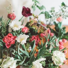 Projekt Blume (@projektblume) • Instagram photos and videos Videos, Plants, Instagram, Projects, Flowers, Plant, Planets