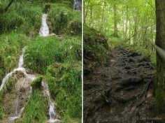 Die Raumfee: Kaskaden-Wasserfall bei Kaltenbrunn, Allgäu