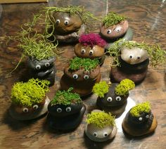Rock trolls with moss hair for our Frozen party! Frozen Birthday Theme, Frozen Party, Frozen Trolls, Art For Kids, Crafts For Kids, Frozen Decorations, Fairytale Party, Troll Party, Childrens Gifts