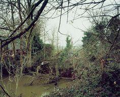 Jem Southam 'The Pond at Upton Pyne, December 2001' The Pond at Uptown Pyne