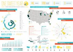 Lemonly Infographic Annual Report Design