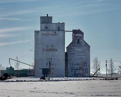 Grain elevators in the town of Eyebrow, Saskatchewan. March Rural Municipality of Eyebrow. Small Buildings, Model Train Layouts, Old Barns, Windmills, Model Trains, Willis Tower, Montana, Abandoned, Eyebrows