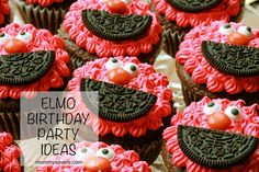 Frugal Elmo Birthday Party Ideas #elmo @Michelle Flynn Richards Just need red…
