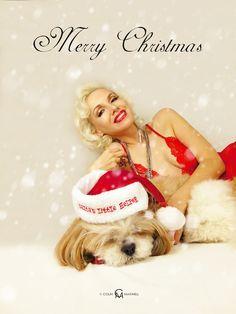 Merry Christmas card 2017 photo: Colin Maxwell