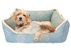 Details by Precious Tails Aqua Medallion Canvas Rectangular Pet Bed Cuddler with Fleece Piping and Fleece Center Seat 26'x20'x10' *** New and awesome product awaits you, Read it now