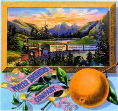 Villa Park Banana Belt Locomotive #2 Orange Citrus Fruit Crate Label Art Print