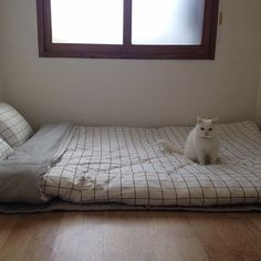 Mattress On Floor Ways To Cool Your Home Without Cranking Up The AC. Bedroom Decoration Cheap Room Ideas Easy Home Decor . Home and Family Bedroom Apartment, Home Bedroom, Bedroom Decor, Bedroom Ideas, Bedrooms, Minimalist Room, Room Goals, Aesthetic Bedroom, Dream Rooms
