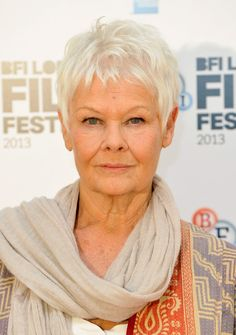 Judi Dench Photos - Actress Dame Judi Dench attends the 'Philomena' photocall during the BFI London Film Festival at Claridges Hotel on October 2013 in London, England. - 'Philomena' Photo Call in London Short Shag Hairstyles, Mom Hairstyles, Short Pixie Haircuts, Short Hairstyles For Women, Short Hair Older Women, Short Grey Hair, Long Hair, Judy Dench Hair, Judi Dench Hairstyle
