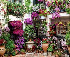 Cordoba -Spain