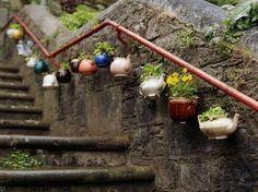 Teapot Planters rainegarden