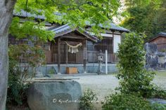 """This is the Amakashi ni Imasu Shrine (甘樫坐神社), an old shrine dating back to 6th century. Empress Suiko (推古天皇), the 33rd Empress of Japan, is thought to have lived in this area for some time before moving to the Imperial Palace of Owarida. An ancient ritual, Kukadachi (盟神探湯) or """"Trial by Ordeal"""" was held here in olden times. Emperor Ingyō (允恭天皇) was the 19th emperor of Japan. #AmakashiniImasuShrine, #甘樫坐神社, #EmpressSuiko, #推古天皇, #Kukadachi, #盟神探湯, #AsukaMura, #明日香村, #Nara,"""