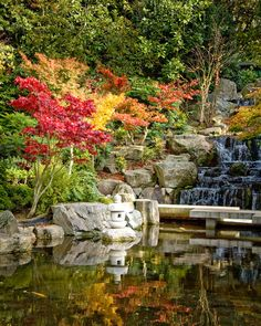 Holland park japanese garden - I used to live 5 minutes away from here...