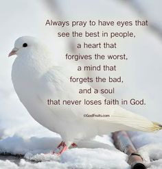 ∞☯❤☯∞ Always pray to have eyes that see The Best in people, a heart that forgives the worst, a mind that forgets the bad, and a soul that never loses faith in God. ∞☯❤☯∞ * Nothing But The Best * Affirmations, Great Quotes, Inspirational Quotes, Motivational Thoughts, Losing Faith, Spiritual Inspiration, Teacher Inspiration, Faith In God, God Is Good