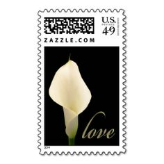 >>>Are you looking for          	Calla lily Love Postage Stamps           	Calla lily Love Postage Stamps we are given they also recommend where is the best to buyHow to          	Calla lily Love Postage Stamps Review on the This website by click the button below...Cleck Hot Deals >>> http://www.zazzle.com/calla_lily_love_postage_stamps-172107631141459543?rf=238627982471231924&zbar=1&tc=terrest