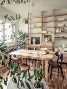 Estúdio de 48 m² ganha leveza com madeira clara e muitas plantas (Foto: Lorenzo Pennati/Divulgação)