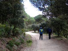 Los 10 mejores lugares para hacer senderismo esta primavera en España