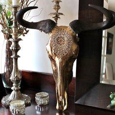 Ethereal Sunset African Wildebeest Skull
