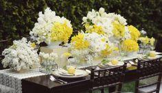 Bloom Box.  Sunny yellow, white, and dark brown.