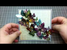 Acetate Butterfly Card